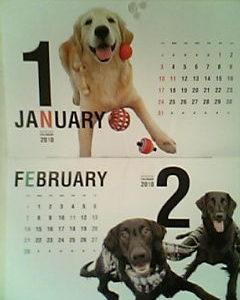 【犬バカ】「RETRIEVER」 (2010年 01月号)付録のカレンダーがたまらない件