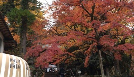 香川県の紅葉の名所としても有名な四国八十八ヶ所霊場のゴール、第八十八番札所大窪寺に行ってきたよ