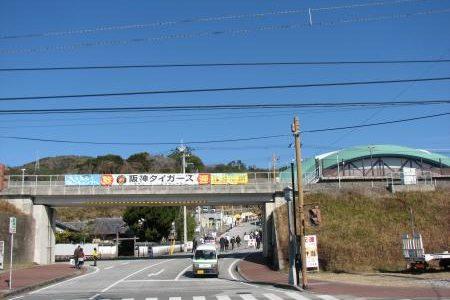 【旅】阪神タイガース安芸キャンプ&岩崎弥太郎生家に行ってきました!